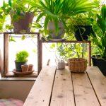 Transform Your Spare Bedroom